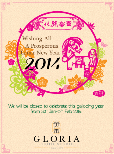 CNY2014_mainsite